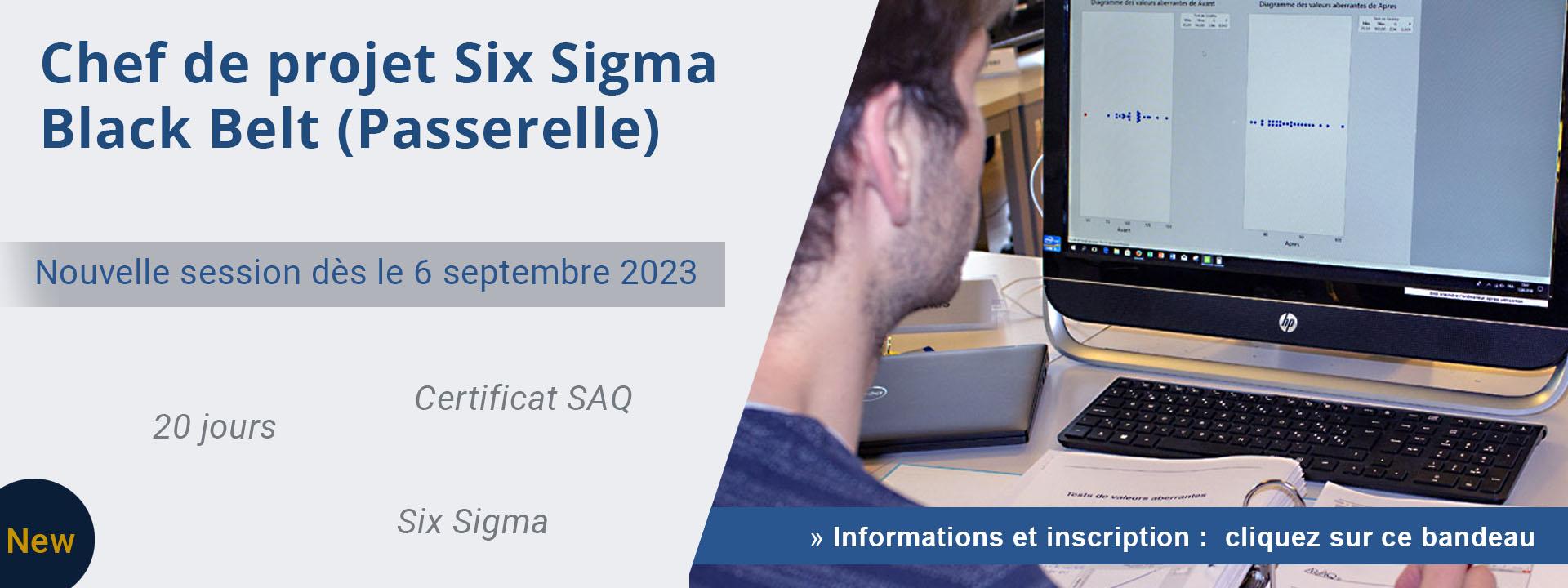 Chef de projet Six Sigma – Black Belt